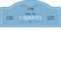 RALLYE DES CAPRICES - 1er Rallye suisse 100% féminin sur Classic Cars
